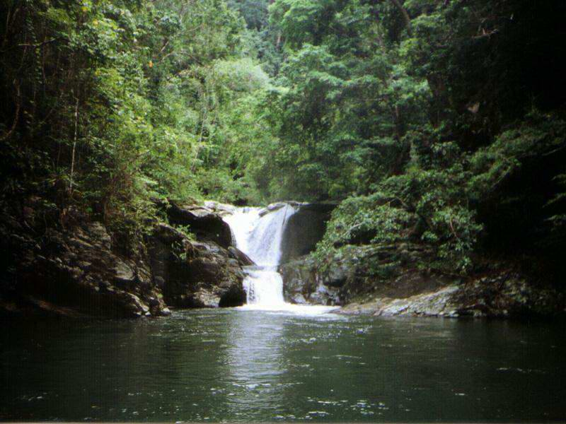 jungle_waterfall_lake